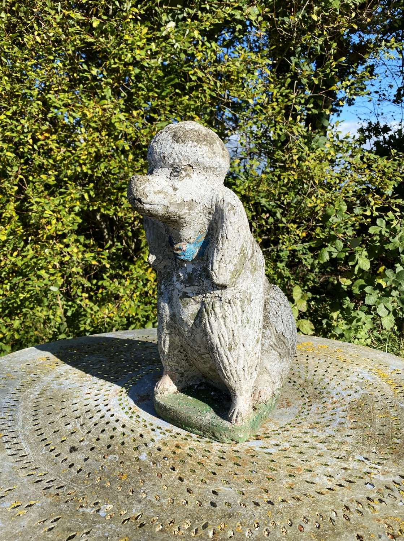 Stone Poodle
