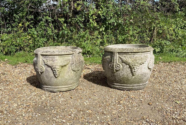 Pair of Grape Planters