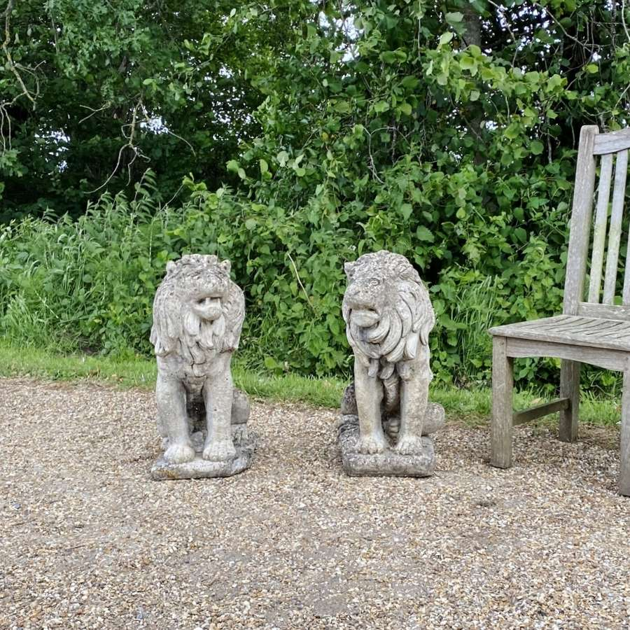 Pair of Stone Lions