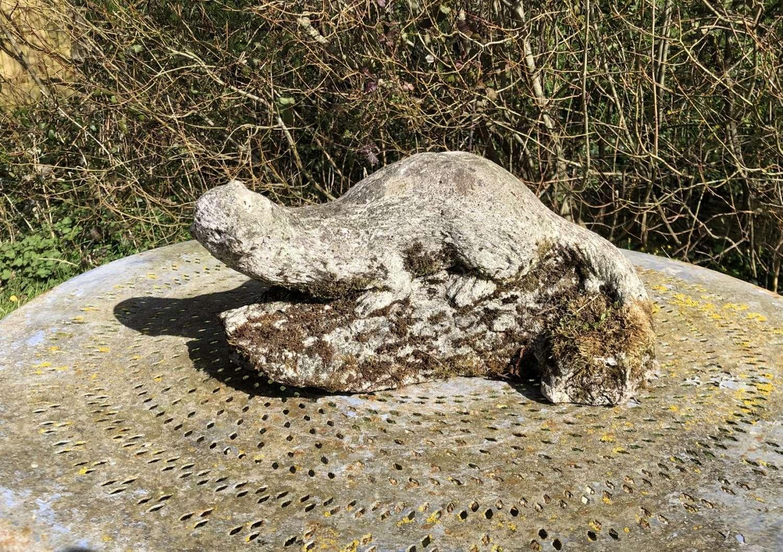 Mossy Otter