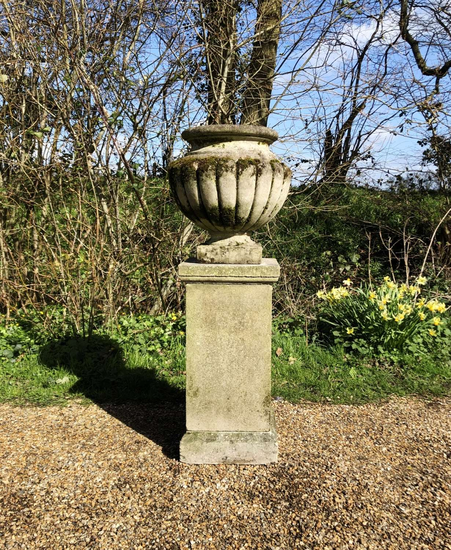 Mossy Vase with Pedestal