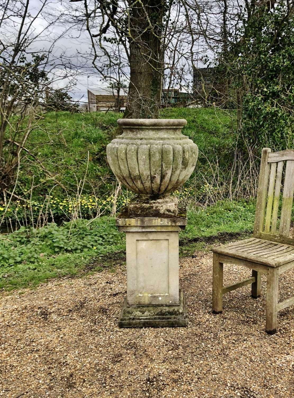Large Warwick Vase with Pedestal