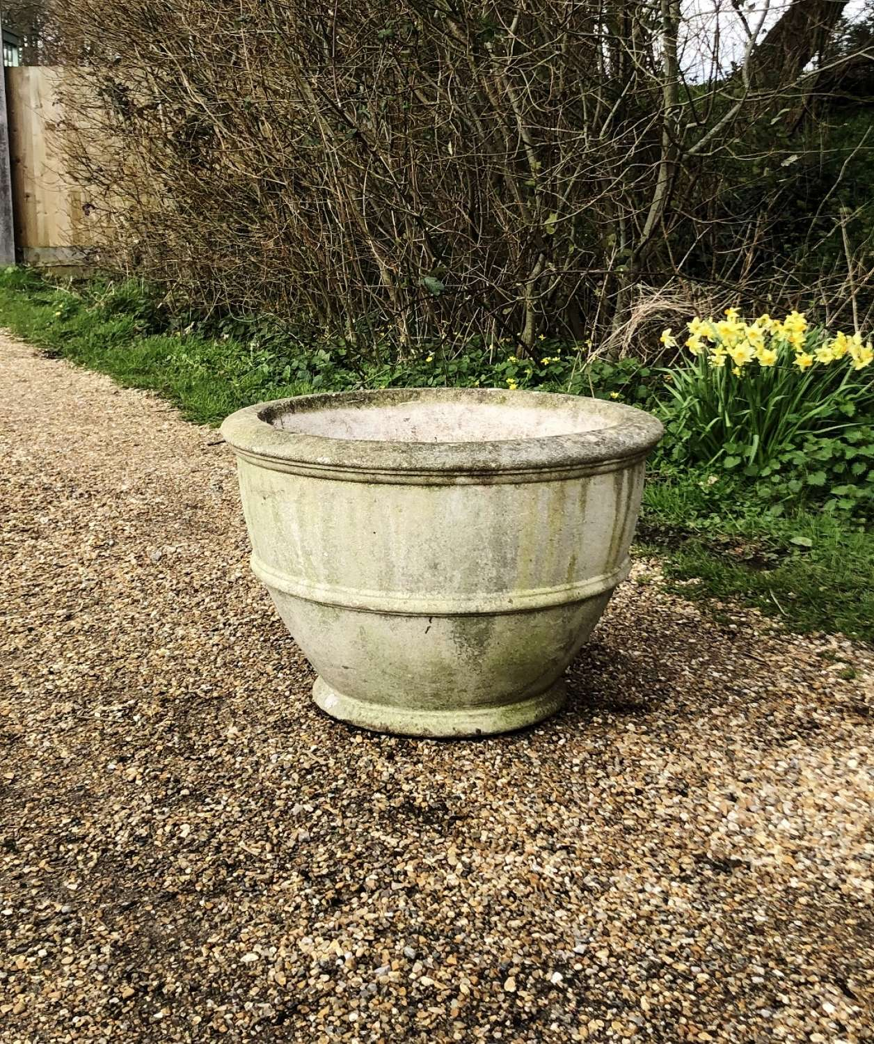Large Egg Cup Planter