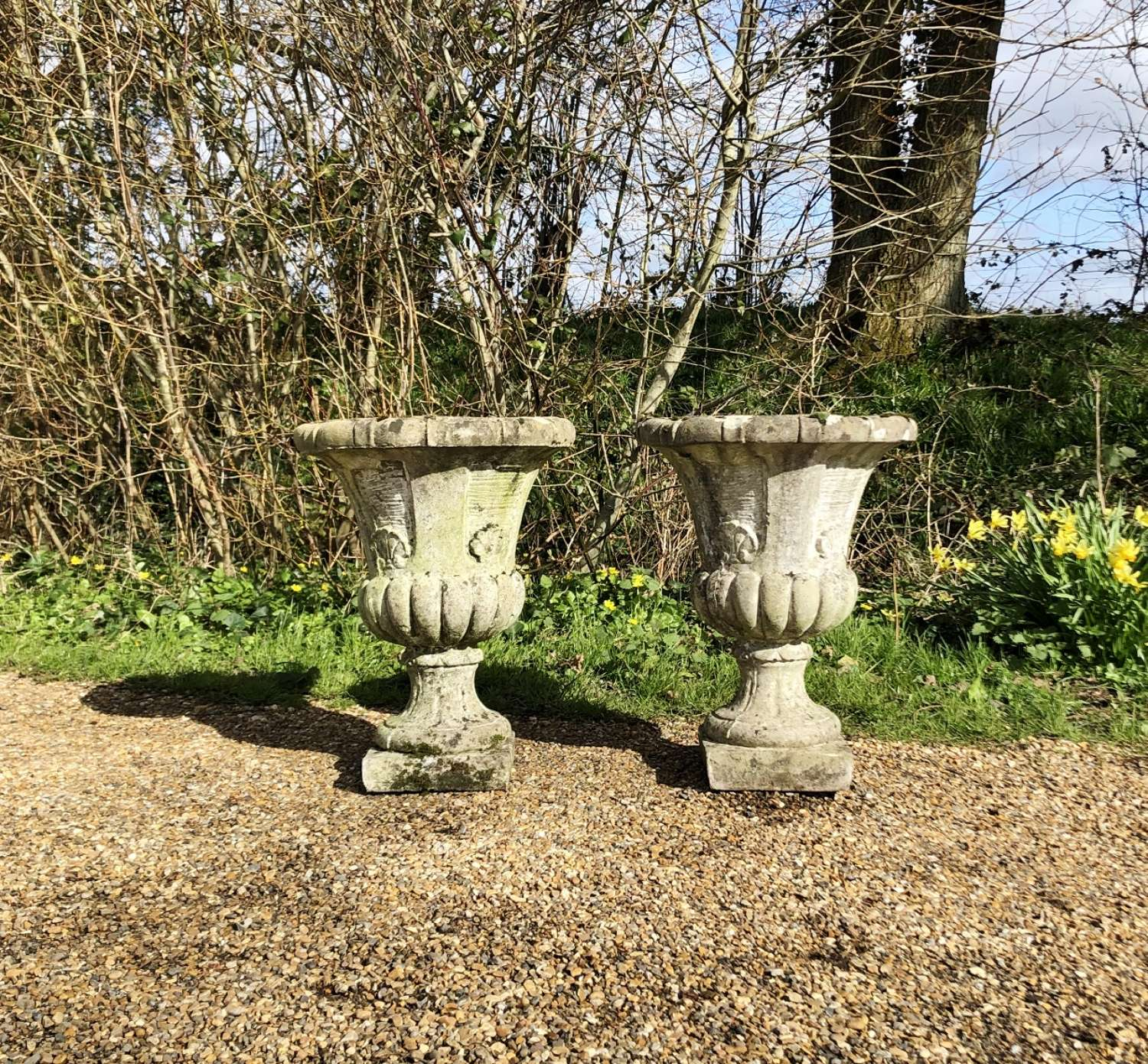 Pair of Shell Campania Urns