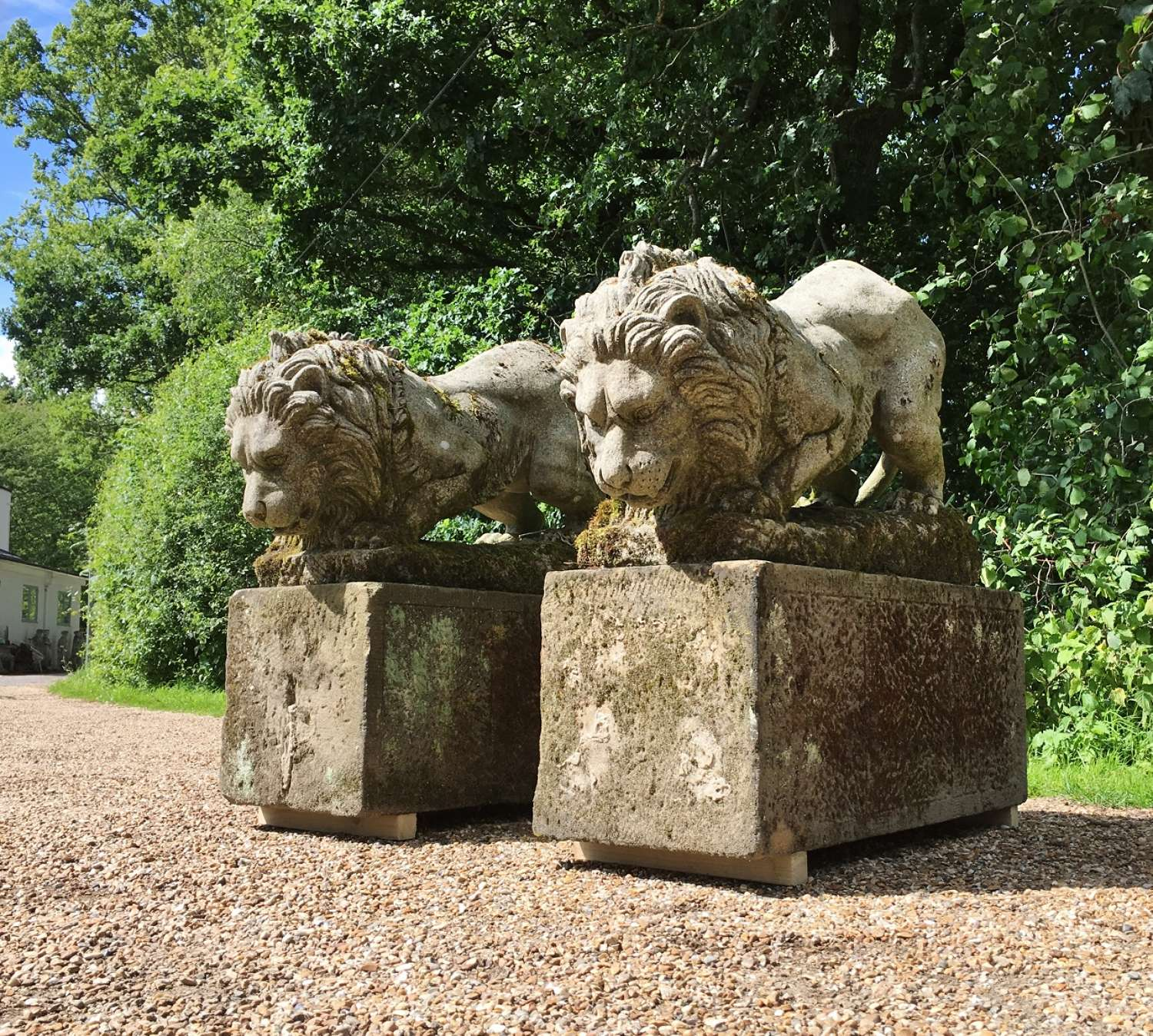 Pair of Large Carved Stone Lions