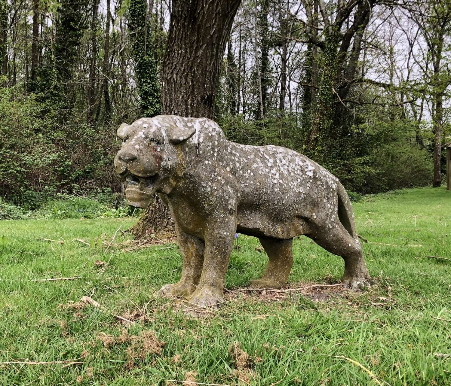 Large Carved Stone Lioness