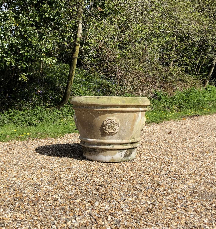 Tudor Rose Planter