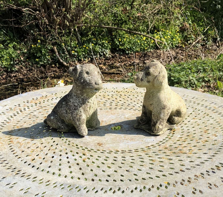 Pair of Stone Puppies