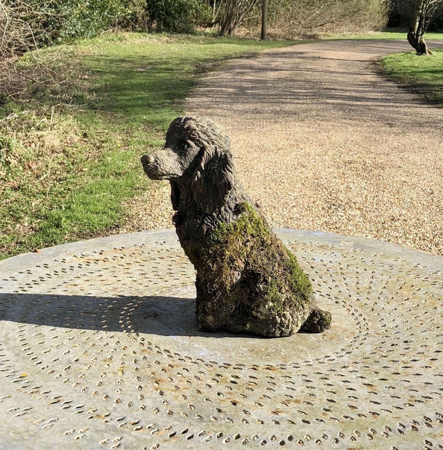 Small Mossy Poodle