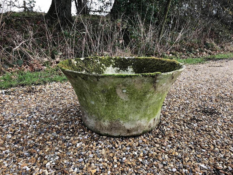 Small Mossy Willy Guhl Planter