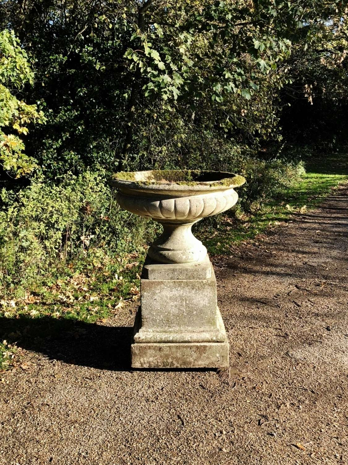 Large Weathered Tazza Urn and Pedestal