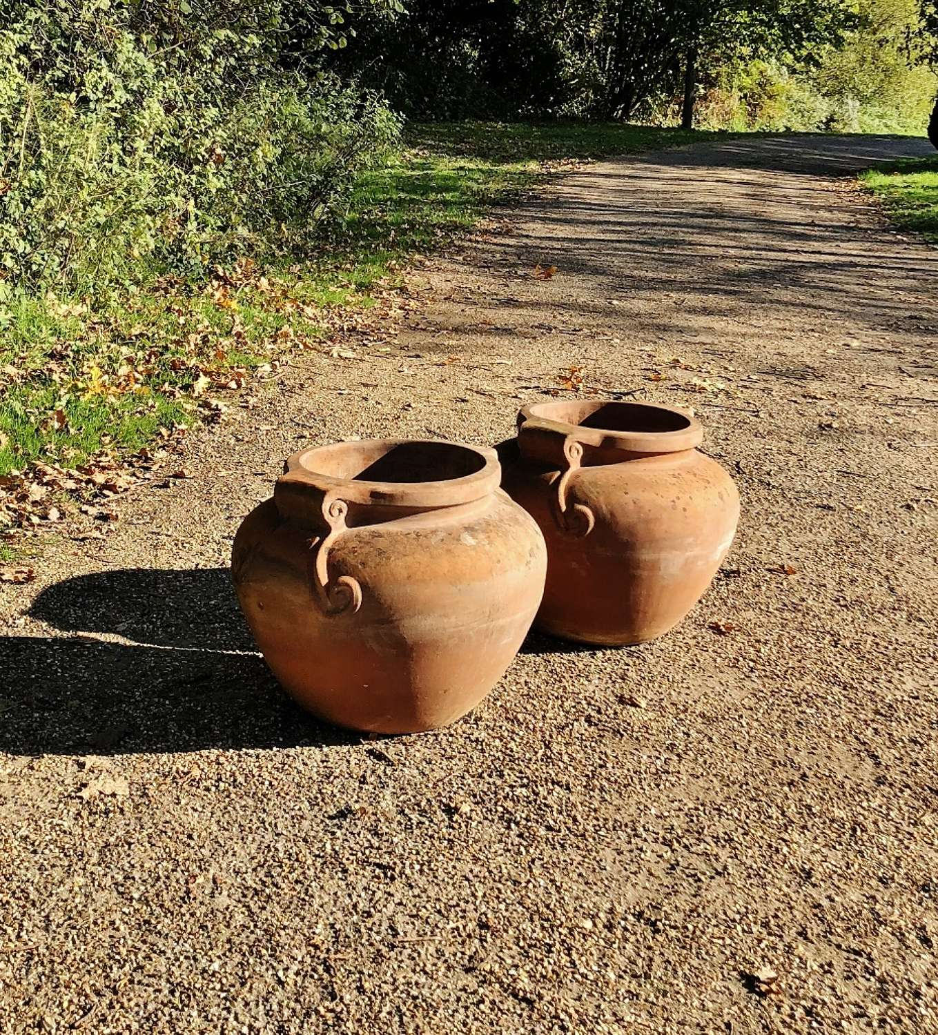 Pair of  Terracotta Scroll Planters