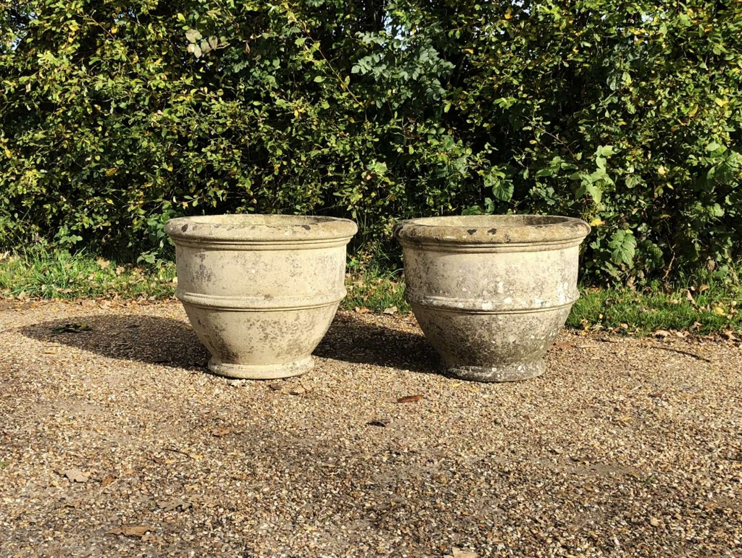 Pair of Egg Cup Planters