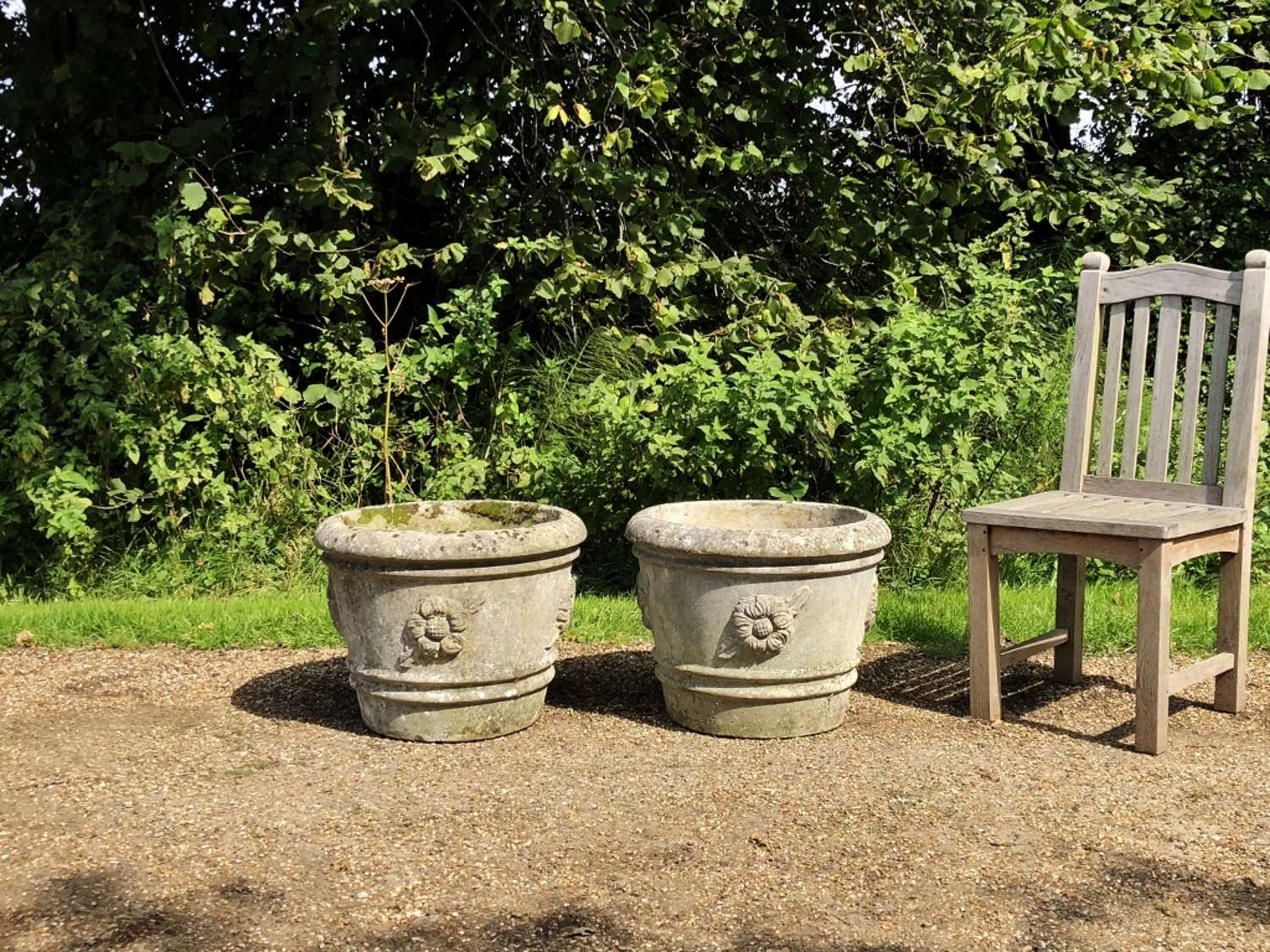 Pair of Large Rose Planters