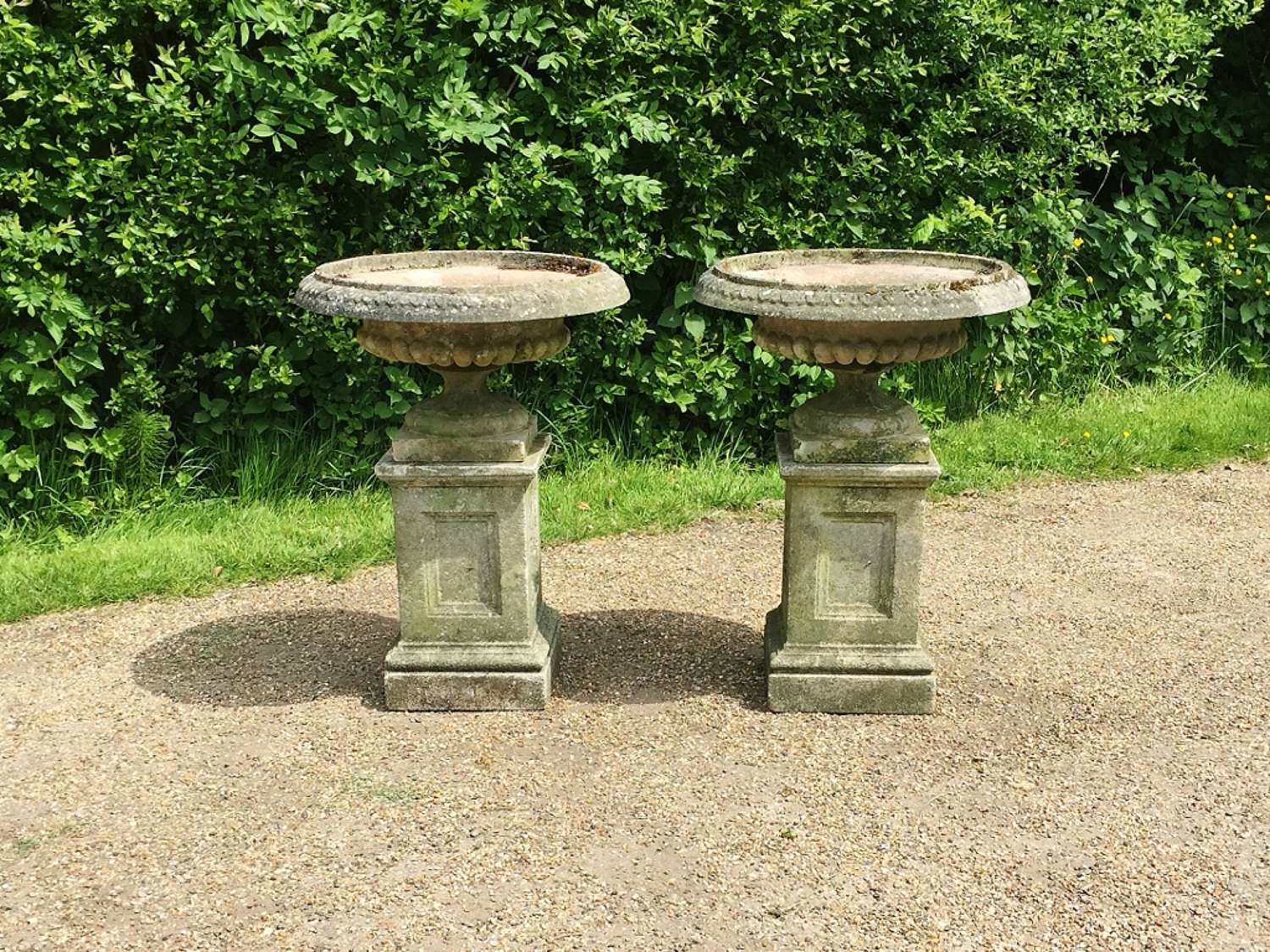 Pair of Tazza Urns with Pedestals