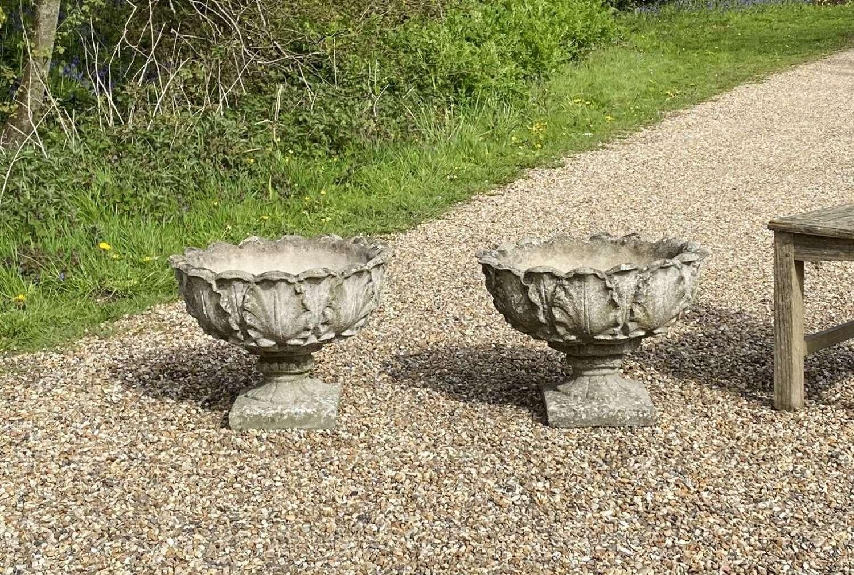 Pair of Acanthus Urns